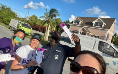 Baark!'s 2021 Household Dog & Cat Survey Blog